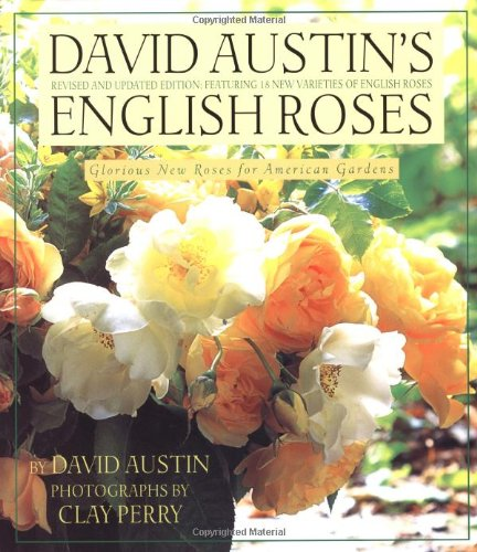 David Austin's English Roses: Glorious New Roses for American - Stores Terrace Clay