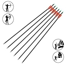 Fiberglass Archery Arrow Outdoor hunting 30 Inch Arrows Replaceable Tips for Recurve and Compound Bow Pack of 12