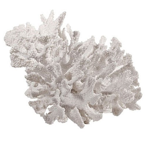 A&B Home 74990 Faux Coral Decor (Table Coffee Coral Reef)