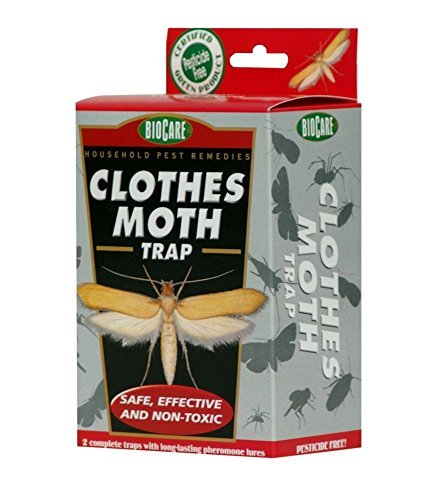 springstar-s1524-jumbo-clothes-moth-trap