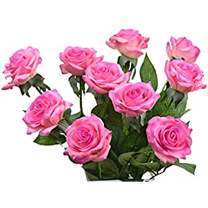 FiveSeasonStuff 10 Stems of Real Touch Silk Roses 'Petals Feel and Look like Fresh Roses' Artificial Flower Bouquet for Wedding Bridal Office Party Home Decor 16