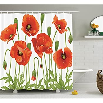 Ambesonne Poppy Decor Collection Spring Wildflower Poppy Ladybug Leaf Springtime