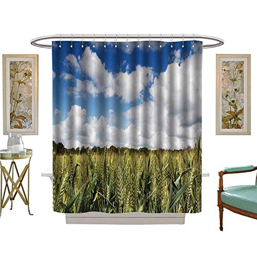 - luvoluxhome Shower Curtains Fabric Wheat Grow in a Field in The chilterns England Satin Fabric Sets Bathroom W48 x L72