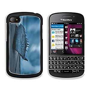 Artistic Boat Wreck Remains This,That & What Nots BlackBerry Q10 Snap Cover Premium Aluminum Design Case Customized Made to Order