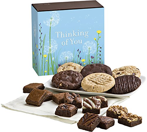 Fairytale Brownies Thinking of You Cookie & Magic Morsel Combo Gourmet Food Gift Basket Chocolate Box - 1.5 Inch x 1.5 Inch Bite-Size Brownies and 3.25 Inch Cookies - 18 Pieces