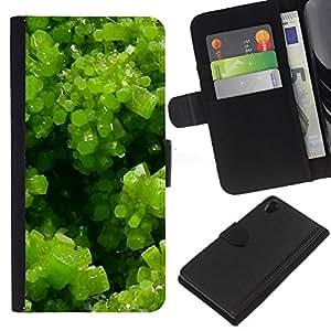 KingStore / Leather Etui en cuir / Sony Xperia Z2 D6502 / Spring Green Plant Summer Sun
