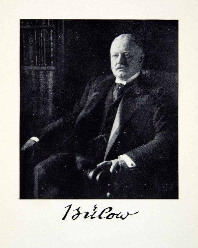1914-print-portrait-prince-bernhard-von-bulow-german-statesman-secretary-state-original-halftone-pri