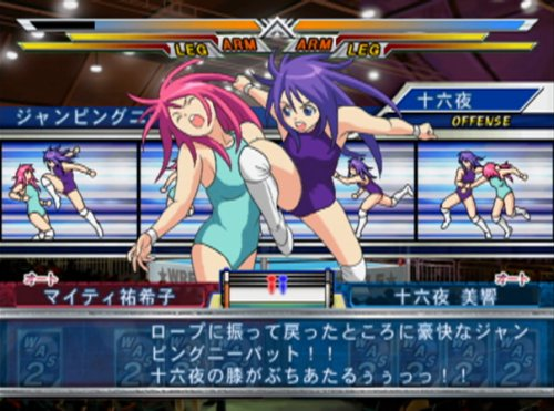 Wrestle Angels: Survivor 2 [Japan Import]