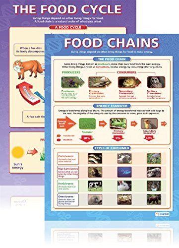 food cycle science - 3