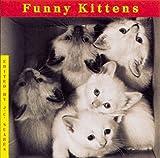 Funny Kittens, J. C. Suares, 0941807304