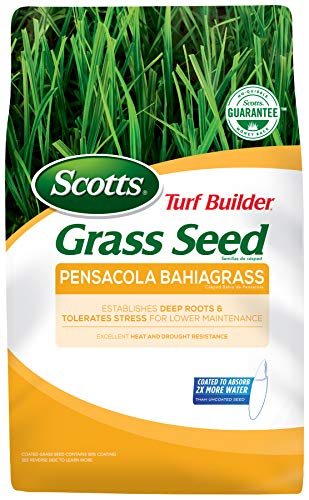 (Scotts Turf Builder Grass Seed Pensacola Bahiagrass - 5 Lb. | Designed for Full Sun | Establishes Deep Roots | 99.9% Weed Free | Seeds Up to 1,000 sq. ft. | 18103)
