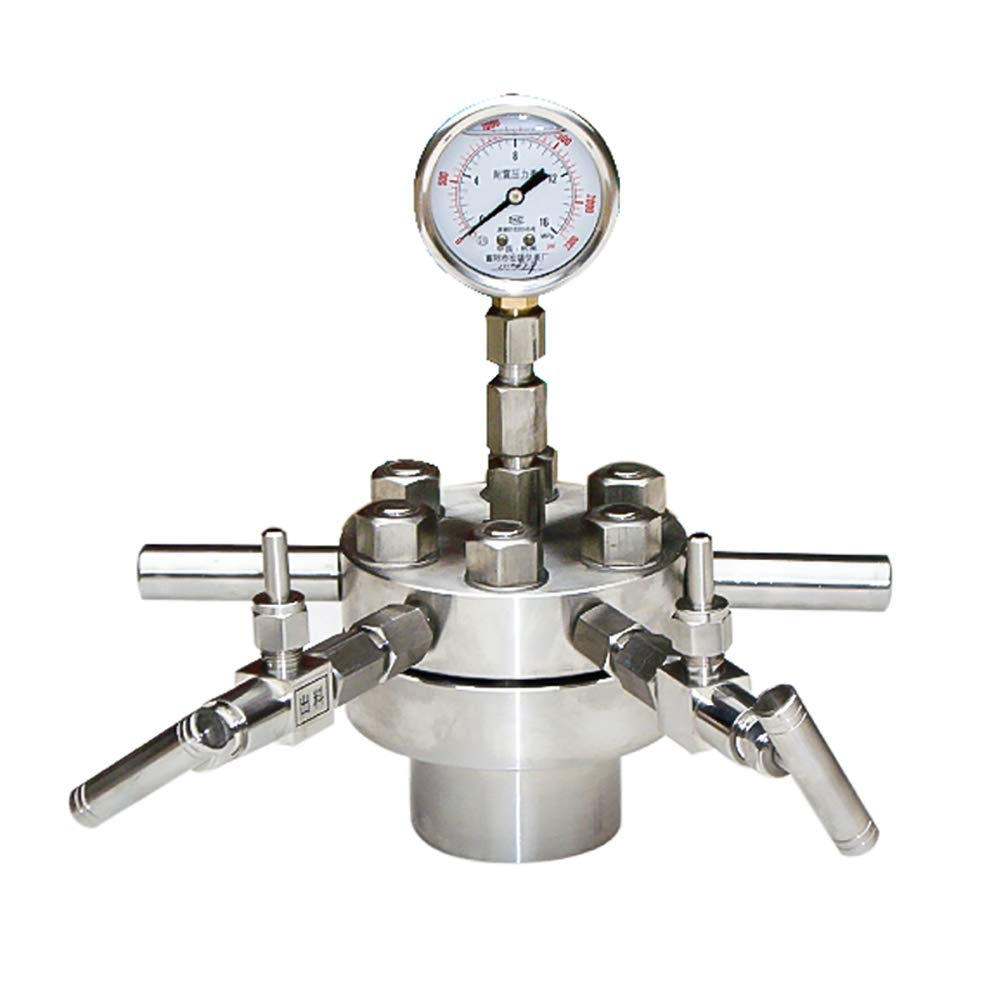 BAOSHISHAN 50ml Hydrothermal Synthesis Autoclave Reactor 22Mpa 350C with 316 Stainless Steel Lining 25/50/100ML High Temperature and High Pressure Size Customizable (50ML) by BAOSHISHAN