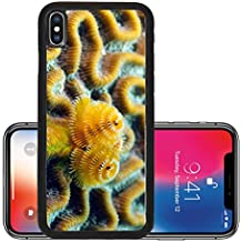 Liili Premium Apple iPhone X Aluminum Backplate Bumper Snap Case Soft coral marine life in ocean in tropical location IMAGE ID 13965522