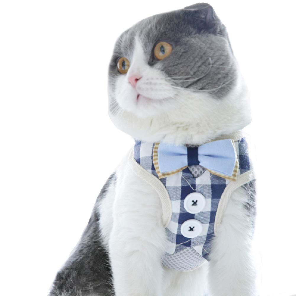 Dorlotou Cat Harness Vest Rope Traction for Small Puppies and Cats,Blue-L