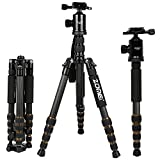 ZOMEI Z699C Carbon Fiber Portable Tripod with Ball Head Compact Travel for Canon
