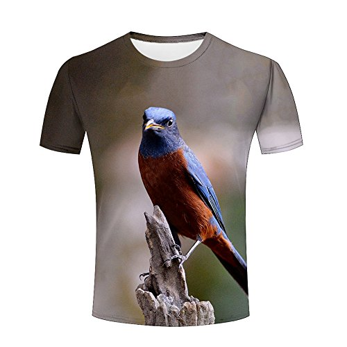 - xijia custom Men's Casual 3D Funny Animals Print Bird/Tiger/Kitten/Underwater World Graphics Crew Neck Short Sleeve T-shirt Tees L