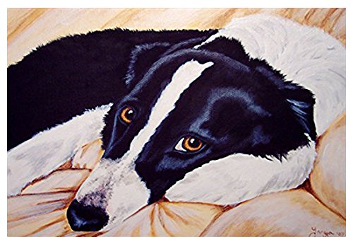 Naptime Rug - Caroline's Treasures AMB1080MAT Naptime Border Collie Indoor or Outdoor Mat, 18