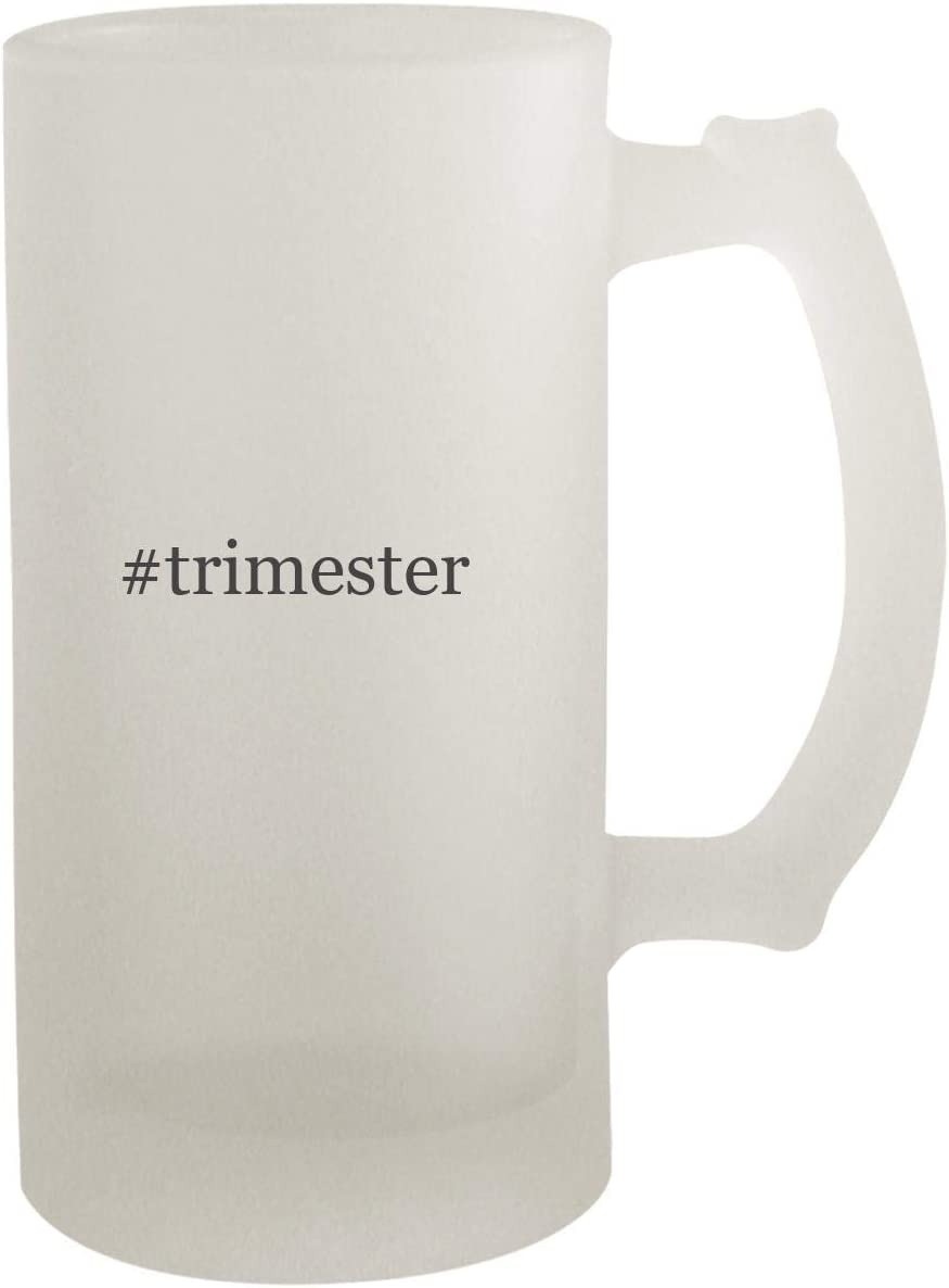 #trimester - Frosted Glass 16oz Beer Stein