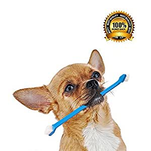 Dog Toothbrush Set with Two Dual Double Headed Toothbrushes By Golf