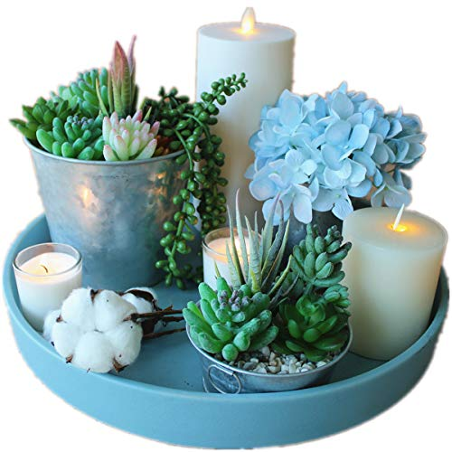 TEHome Artificial Succulent Plants 10 Pcs Unpotted Fake Succulents Mini Faux Succulent Plants String of Pearls Succulent for Home Decor, Gift and Wedding