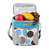 12 bottle insulated tote - FORBEST Cooler Bags with Insulated Layer 10L Working Time up to 16 Hours