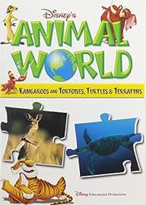 Kangaroos & Tortoises Turtles & Terrapins