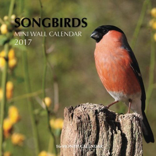 Songbirds Mini Wall Calendar 2017: 16 Month Calendar PDF