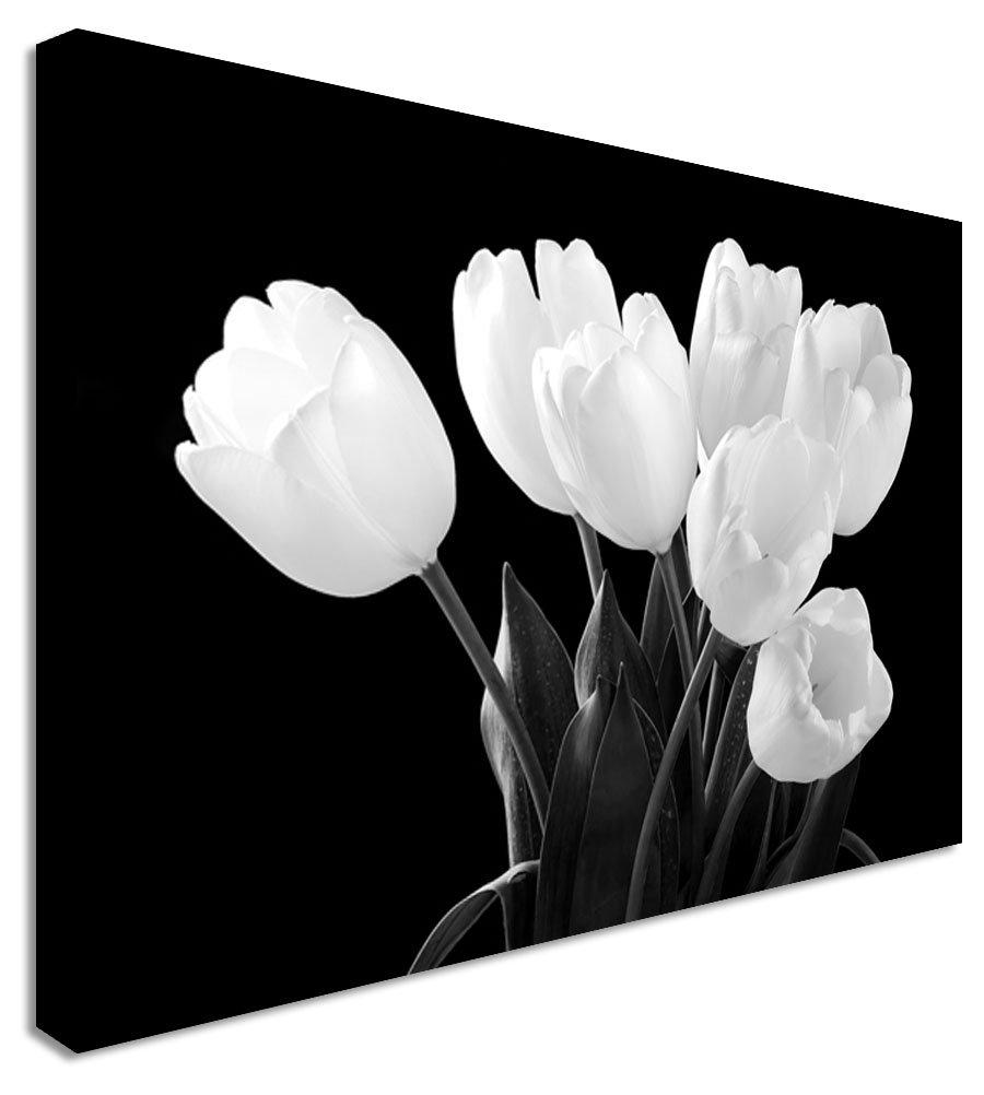 Tulip darkness black white garden floral flower canvas wall art tulip darkness black white garden floral flower canvas wall art print 20x30 inches amazon kitchen home mightylinksfo