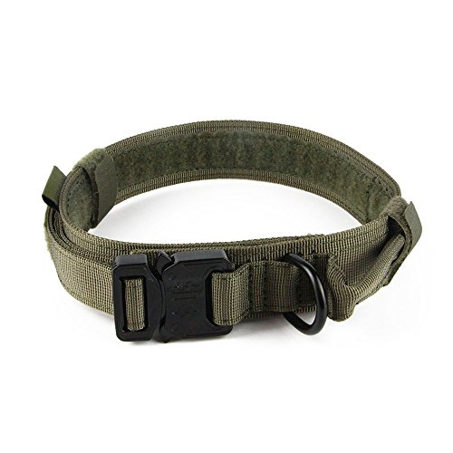 Yisibo Dog Harness Collar Tactical Nylon Collar Military Training Adjustable Dog Collar Leash With D-ring Handle Metal Buckle 1.5'' for Small Medium Large Dogs(1.5''L, Ranger Green)