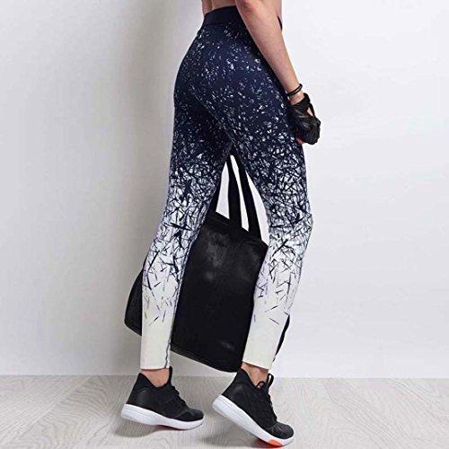 de de Maigre Bleu Sport de nement d'entra 4 des Femmes Gymnastique nement 3D Courts Sport GreatestPAK d'entra d'impression Pantalons Leggings Fp0AqA