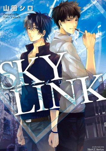 SKY LINK (ミリオンコミックス HertZシリーズ)