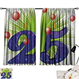 Jinguizi 25th Birthday Bedroom/Living Funky Vibrant Twenty Five with Stars Candle Balloons Art Print Insulating Darkening Curtains Purple Green Dark Coral W55 x L39