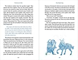 NIrV, The Story for Kids, Paperback: Discover the