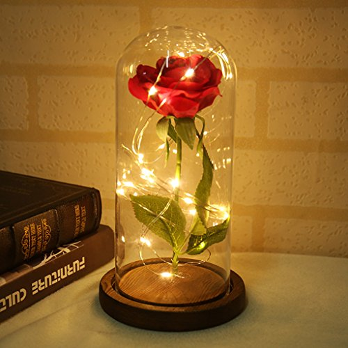 Warmmie Beauty and The Beast Preserved Fresh Rose Flower Light in a Glass Romantic Wooden Base Valentine's Day Birthday Anniversary (Brown) ()