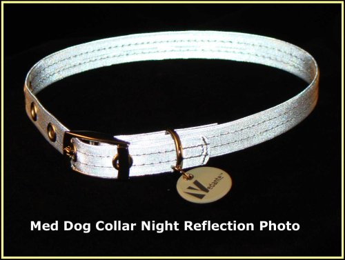 Vedante Super Reflective Dog Collar with Bonus Glow in the Dark Tag (Medium, Silver), My Pet Supplies