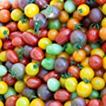 Tomato Cherry Rainbow Mix Seeds - Col...