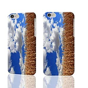 Fall Corn Stalks And Blue Skies 3D Durable Hard Unique Case For iPhone 5C