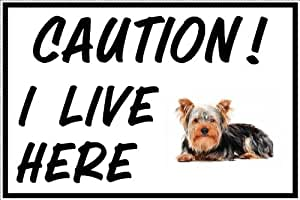 I LIVE HERE Yorkshire Terrier A5 sign