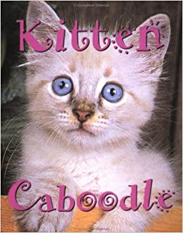 Kitten Caboodle (Tiny Tomes)