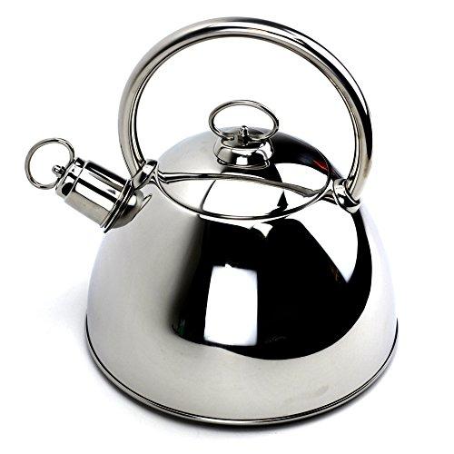 Tea Kettle,Stainless Steel Teakettle with Lid,Silver