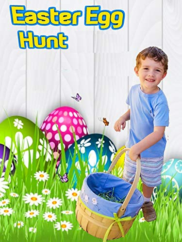 Easter Egg Hunt ()