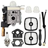 RB-K66 RB-K70 Carburetor for ZAMA RB-70A RB-K75 EHO SRM230 SRM-225 HC-150 HC-151 HC-160 HC-161 HC-180 HC-181 HC-200 HCR-150 HCR-151 SHC-210 SHC-211 Hedge Clipper A021000382 A021000720 with Air filter