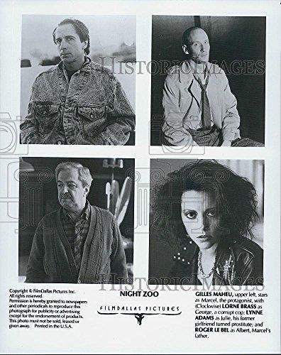 """Hustle Photo Gilles Maheu, Lorne Brass, Lynne Adams, Roger Le Bel in """"Night Zoo"""""""