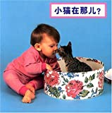 Where's the Kitten? (Simplified Mandarin), Cheryl Christian, 1932065660