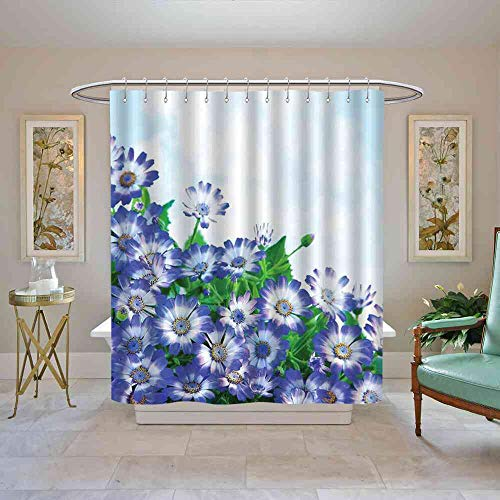 TimBeve Shower Curtain Floral,Fresh Wildflowers in Grass Vivid Spring Daisy Bloom Over Sky Floral Design Print,Blue Green Shower Curtain Set, W69 x L84