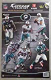 Miami Dolphins NFL Team set Fathead Teammates 6 players