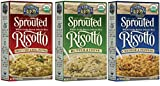 Lundberg Gluten-Free Sprouted Whole Grain Brown Arborio Rice Italian Risotto 3 Flavor Variety Bundle: (1) Cheddar & Peppers, (1) Sweet Corn & Bell Pepper, and (1) Butter & Chive, 5.5 Oz Ea (3 Boxes)