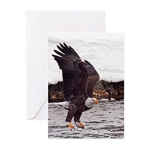 - CafePress - Magnificent Bald Eagle - Greeting Card, Note Card, Birthday Card, Blank Inside Glossy