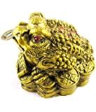 Odishabazaar Vastu Feng Shui Money Frog On Gold Coins Small