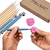 Meuxan 10 Piece Dotting Tools Ball Styluses for